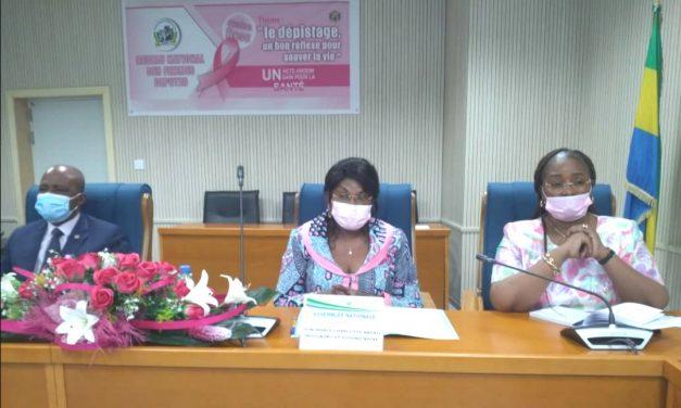 Gabon/Cancers féminins : Le réseau national des femmes députés sensibilisées
